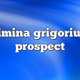 Airs on September 17, 2020 at 02:00PM simina grigoriu on enationFM