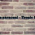 paride saraceni – Tronic Radio